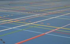 Advies: sporthal Tubbergen op locatie Vlaskoel